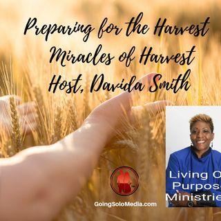 Preparing for Your Harvest - Davida Smith