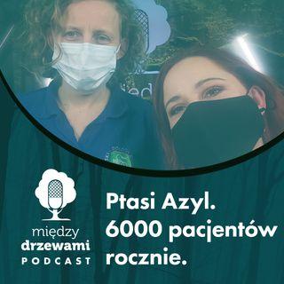 #54 Ptasi Azyl. 6000 pacjentów rocznie [dr Agnieszka Czujkowska]