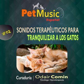 #02 Sonidos Terapéuticos para Tranquilizar Gatos | PetMusic