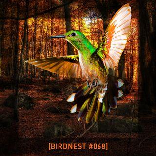 BIRDNEST #068 | The Autumn Inside | Podcast by The Lahar