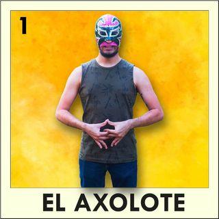 1. Axolote