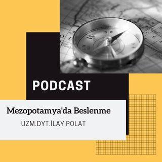 Tarih Boyunca Beslenme -Mezopotamya da Beslenme