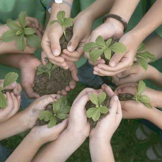 Participación en temas ambientales