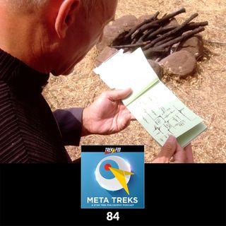 Meta Treks : 84: Meta-Metaphoric