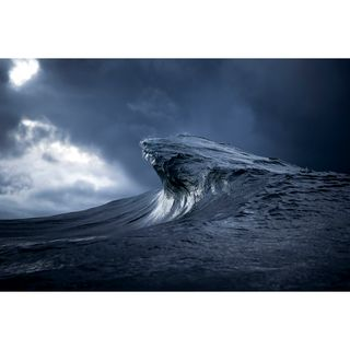 Ray Collins - The Two Ingredients are Water and Light