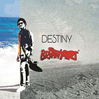 Bryan Art - Destiny