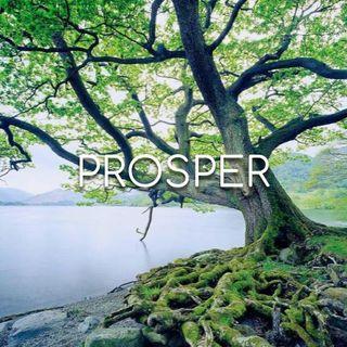 Prosper - Morning Manna #3020