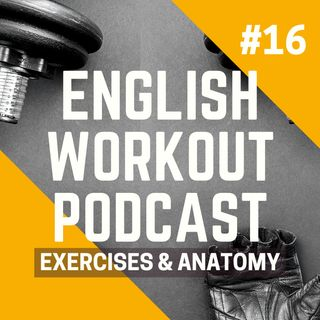 #16 Conversations at the Gym - Exercises and Anatomy