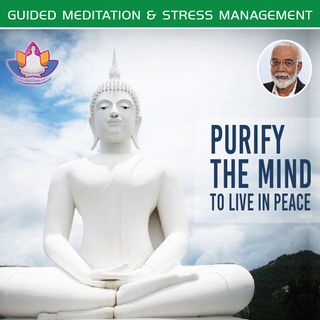 Meditation-4 Purify the mind and remove anxiety
