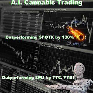 A.I. Cannabis Stock Index Update