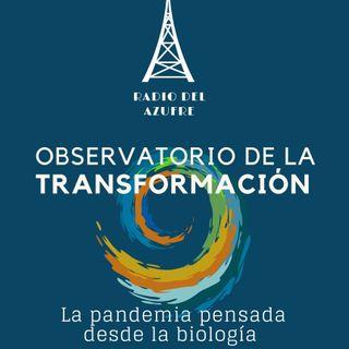 Observatorio de la Transformación con Ana Tejero