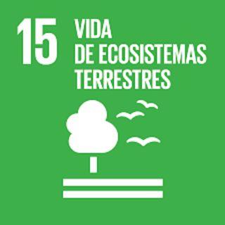 15. Vida de ecosistemas terrestres