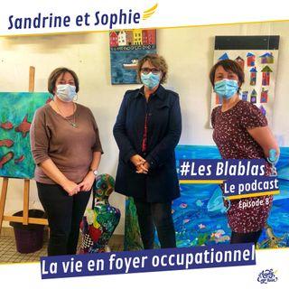 #8 La vie en Foyer Occupationnel d'Accueil - Les Blablas : Osons parler du handicap.