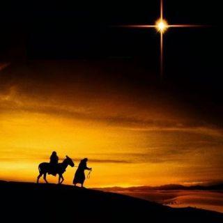 Rumbo a Belén - Novena de Navidad