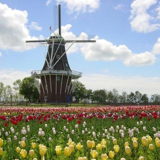 BTM: Learn about Holland's Windmill Island Gardens (April 10, 2016)