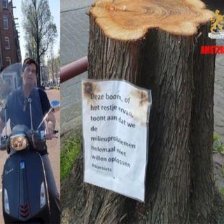 GroenLinks Maffia in Amsterdam een gevaar voor o.a. AJAX,  Snorscooters en Bomen.