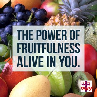 The Power of Fruitfulness Comes from Living in Vital Union with Christ Jesus.