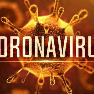 Viga-Truth Show: Coronavirus Theories