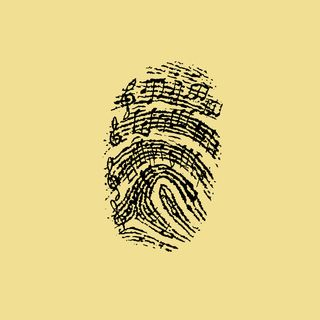 The Fingerprints of Music