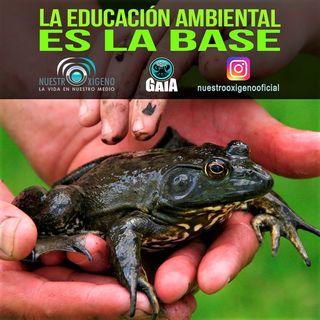 NUESTRO OXÍGENO La educación ambiental es la base - Quim. Luis Manuel Guerra