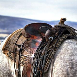 Un vaquero con el corazon roto