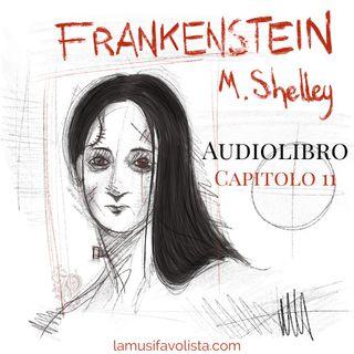 FRANKENSTEIN - M. Shelley ☆ Capitolo 11 ☆ Audiolibro ☆
