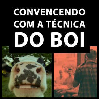 A técnica do Boi
