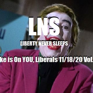 The Joke is On YOU, Liberals 11/18/20 Vol.9 #212