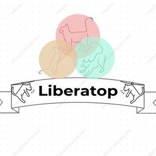 LIBERATOP - Liberalismo
