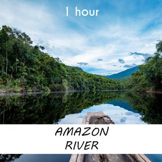 Amazon River   1 hour RIVER Sound Podcast   White Noise   ASMR sounds for deep Sleep   Relax   Meditation   Colicky
