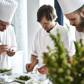 'Hvor vi spiser': Verdens bedste konkurrencekok Rasmus Kofoed er besat af Rudolf Steiner