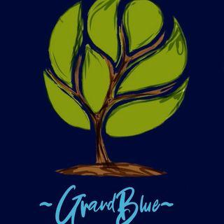 Grand Blue-Civis , prima puntata