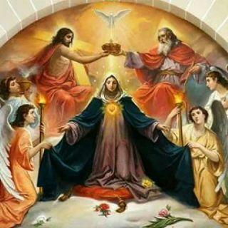 Episodio 12 - Celebrazione Eucaristica quotidiana