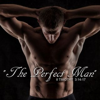 """The Perfect Man"""