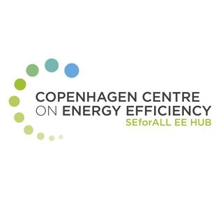 Scaling Up Energy Efficiency