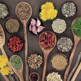 Alimentos como medicamentos herbolarios