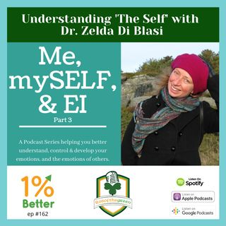 Me, mySELF, & EI Part 3 - Understanding 'The Self' with Dr. Zelda Di Blasi - EP162