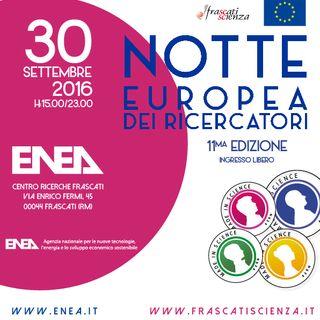 Scienza per l'Arte (lab 8)_Claudia Colantonio_Notte Europea dei Ricercatori 2016 ENEA