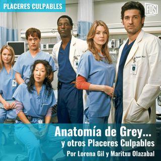 Anatomía de Grey... y otros Placeres Culpables