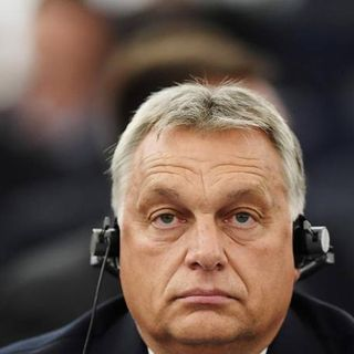 Elly Schlein - Il parlamento europeo vota a favore delle sanzioni contro l'Ungheria