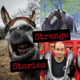 Strange Stories | Talking Donkeys - Numbers 22