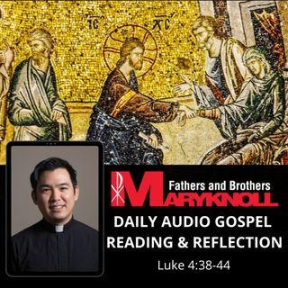 Wednesday of the Twenty-second Week in Ordinary Time, Luke 4:38-44
