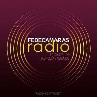 Delitos Informáticos Entrevista Raymond Orta en Tecnofinanzas Fedecámaras Radio