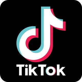 TikTok, il segreto della sua vitalità
