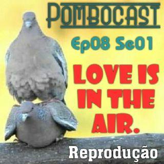 Pombocast Ep08 Se01 - Reprodução