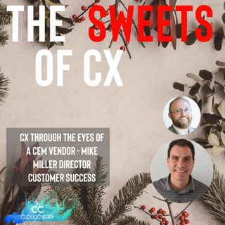 Episode 17: CX Through the Eyes of a CEM Vendor With Mike Miller at CloudCherry