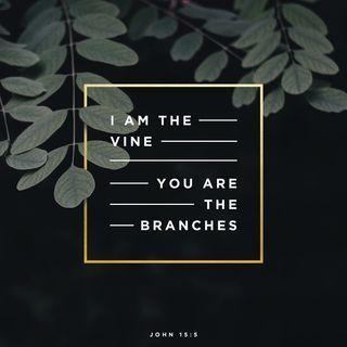 Episode 187: John 15:5 (July 7, 2018)