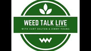 Alchemy League finally gets provisional cannabis license in Massachusetts! Weed Talk up next!