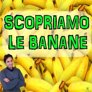 Episodio 32 - LE BANANE - Alla scoperta di questo frutto incompreso