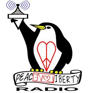 PLL Radio 299